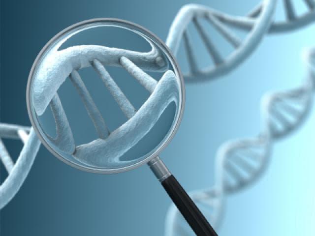 генетик маслаҳатлар